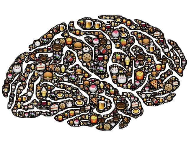alimentation cerveau